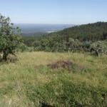 Central Portugal Land for Construction Figueiro dos Vinhos