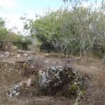 Terreno com ruína entre Ansião e Alvaiázere