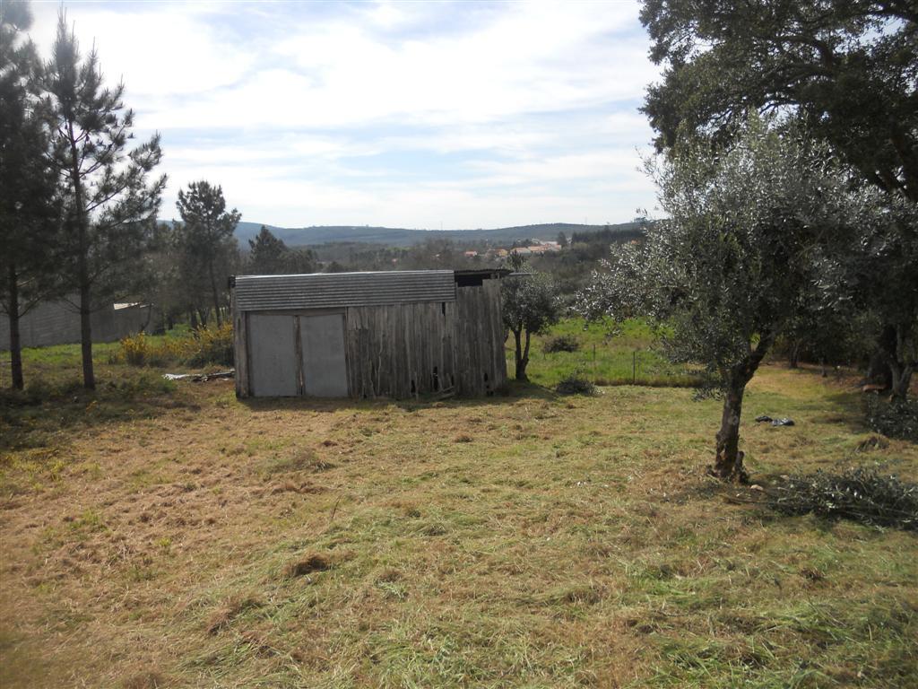 Fantastic building plot near Avelar Central Portugal