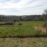 Fantastic building plot near Avelar Central Portugal
