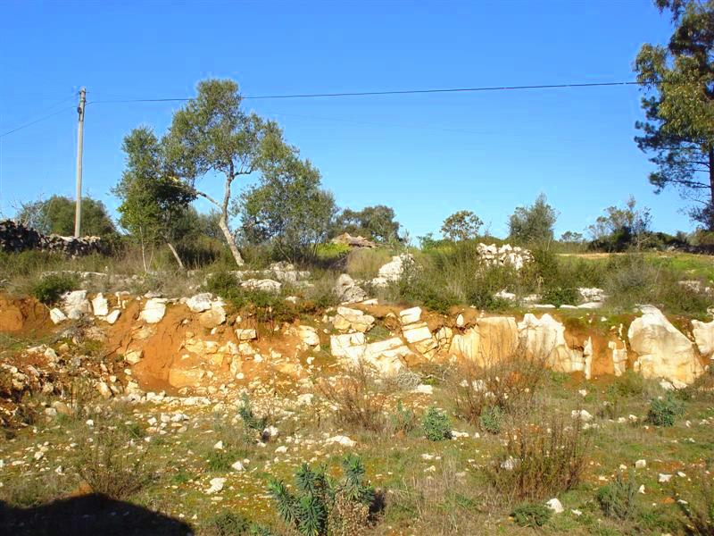 Plot of land with Building Permission Central Portugal