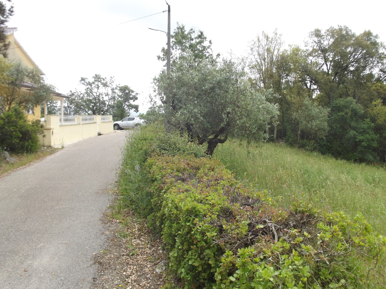 Terreno com Viabilidade de Construção perto de Ansião