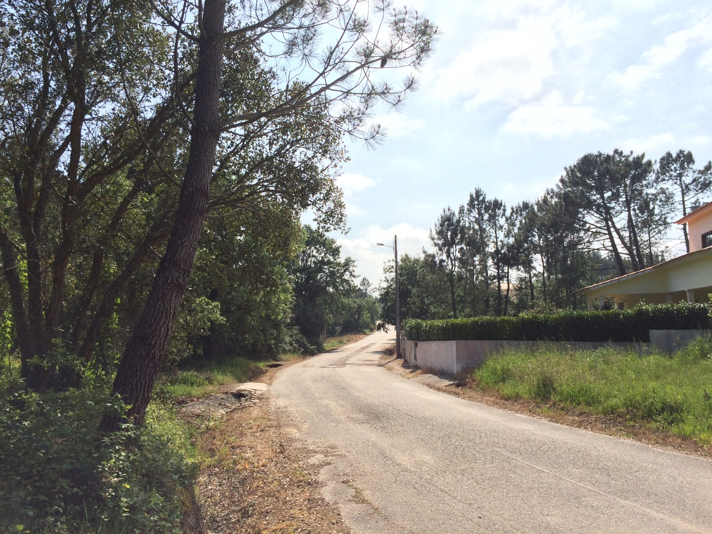 Central Portugal Land for Construction Avelar