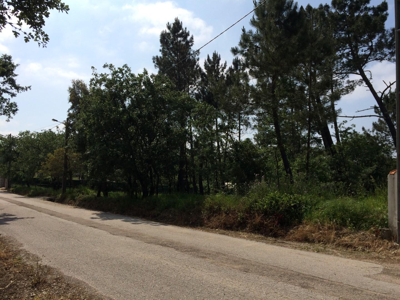 Terreno para Construção Avelar Zona Centro