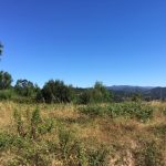 8200m2 piece of land near Macas Dona Maria Alvaiazere