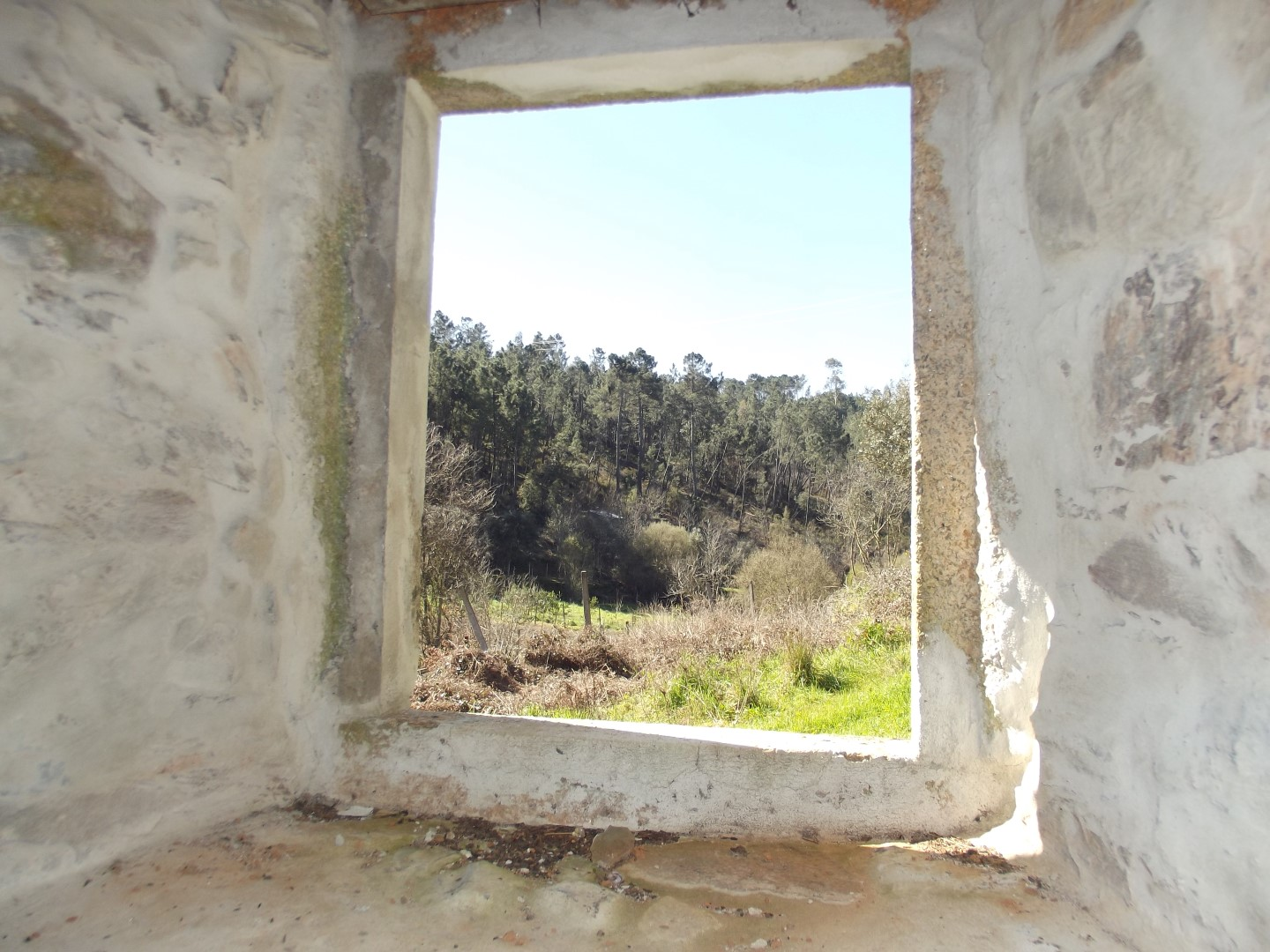 Fantastic former olive mill for sale near Pedrogao Pequeno